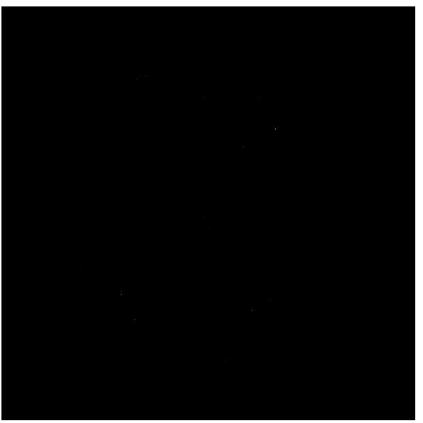 杉のマイスター・マルサク佐藤製材(佐藤製材株式会社)